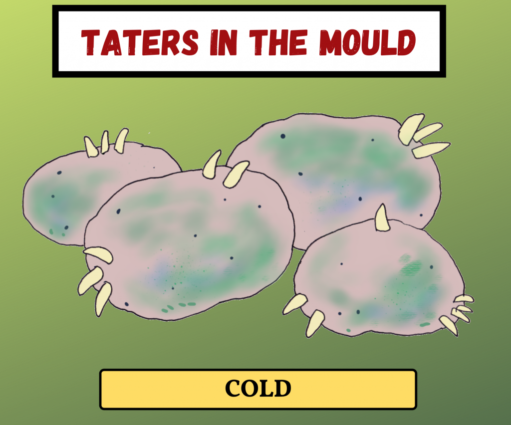 Cockney Rhyming Slang: Taters in the Mould